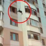 ダンボールが積み上げられた場所に5階の高さから飛び降りる男の映像。