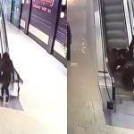 2人の女性がなぜかエスカレーターでゴロゴロ転がってしまう映像。