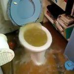 トイレから水が溢れ出して部屋が下水まみれになってしまった映像。