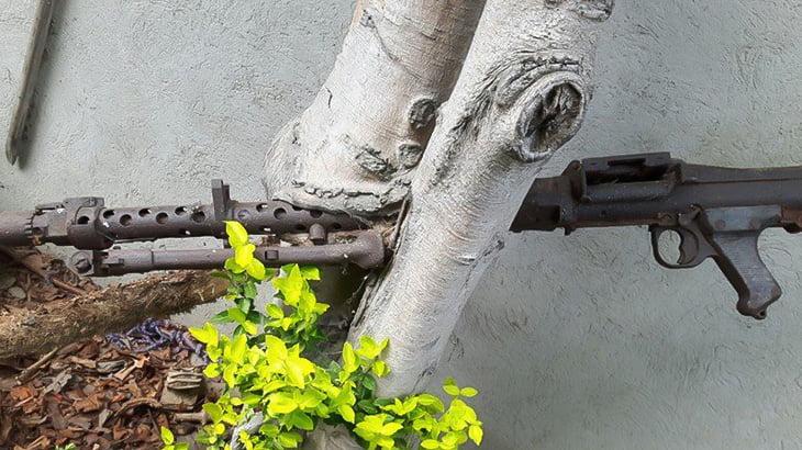 【画像】戦争のなごり。成長した木に埋まってしまった錆びついた銃やナイフ。