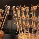 中国の屋台に並ぶ昆虫食、サソリとかムカデとか(動画)