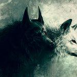 【閲覧注意】オオカミに襲われた男、顔の皮膚をほぼ食われてしまう・・・(画像)
