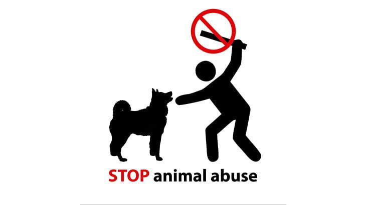 【閲覧注意】縛り付けた犬を刃物で何度も叩き切る男・・・(動画)