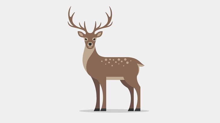 【微閲覧注意】仕留めた鹿をたった2分で解体してしまう男(動画)