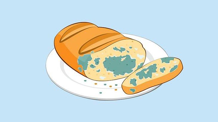 カビだらけのパンをただ静かに食べる女(動画)