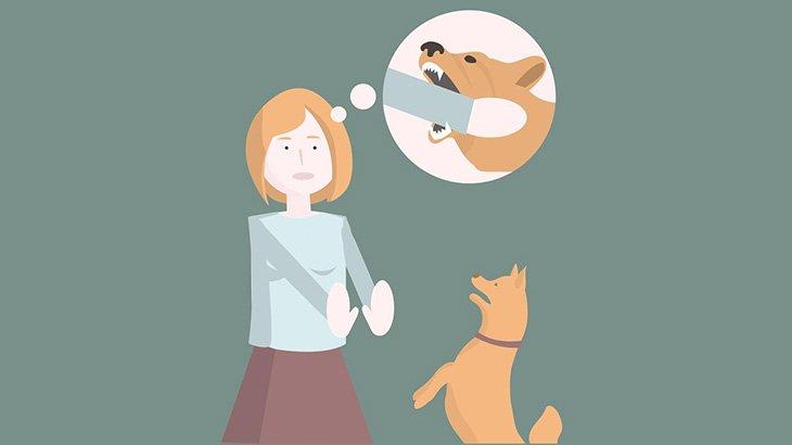 【閲覧注意】18歳の女の子、飼い犬に上唇を噛みちぎられてしまう・・・(画像)
