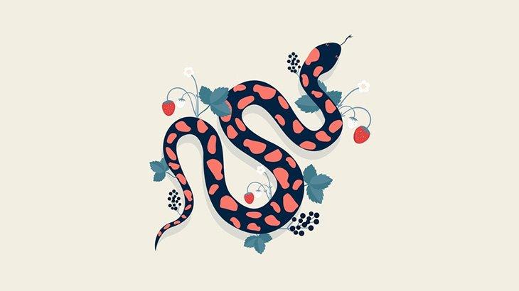 牛さん、超巨大なヘビに食われそうになってしまう・・・(動画)
