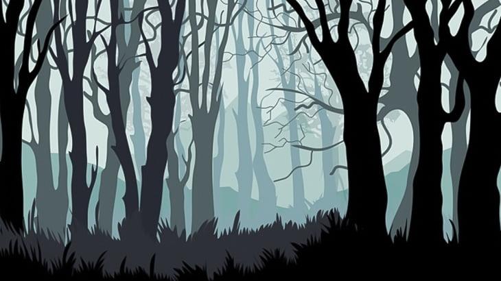 【閲覧注意】森の中で発見された女性、ヤバいことされてた・・・(動画)