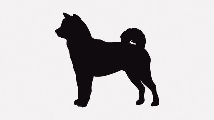 【閲覧注意】この映像は犬好きの人は絶対に見ないほうがいい・・・(動画)