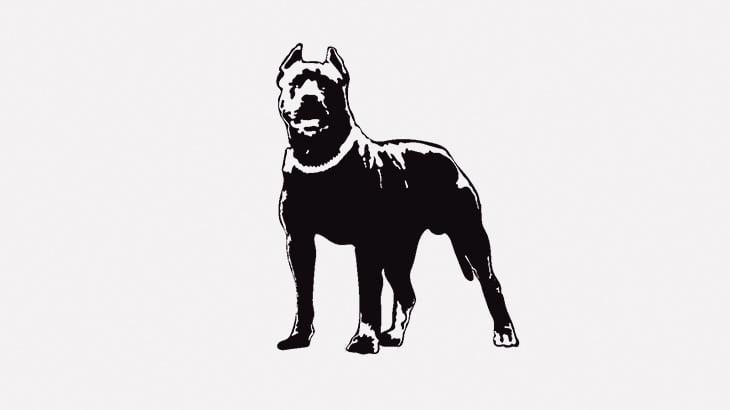 【閲覧注意】ピットブルさん、犬を食ってしまう・・・(動画)