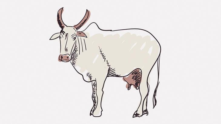 ただ電話してただけの男、牛にど突かれて宙を舞ってしまう(動画)