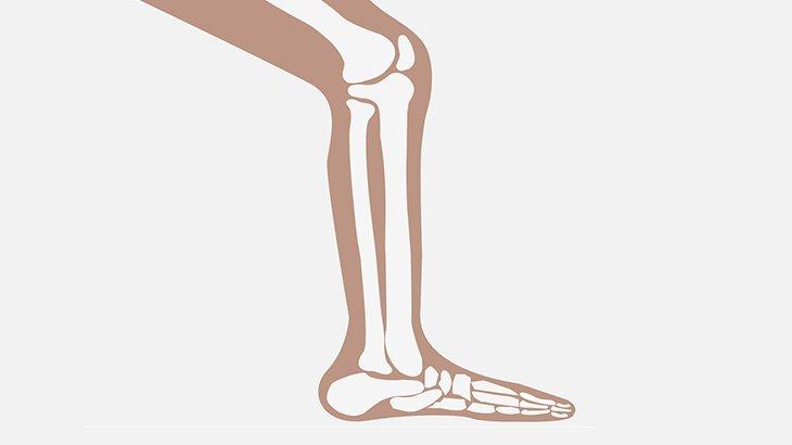 【閲覧注意】膝下を切断する手術映像