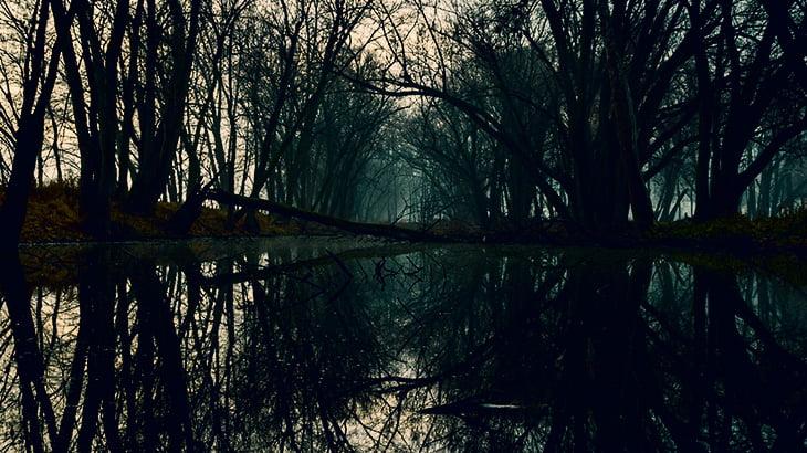 【閲覧注意】川から引き上げられた子供の姿、とんでもないことになってた・・・(動画)