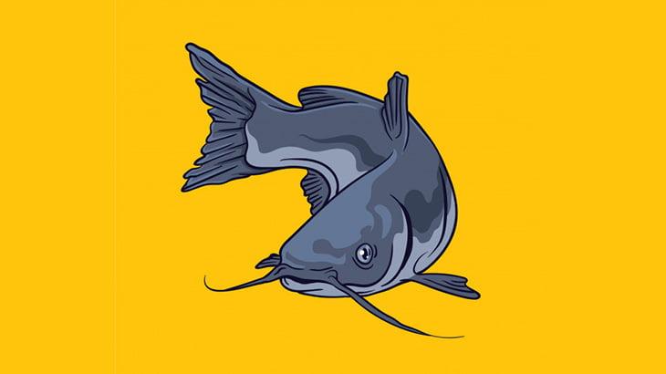 大きな魚の腹を切り開いた結果、中からヤバすぎるモノが・・・(動画)