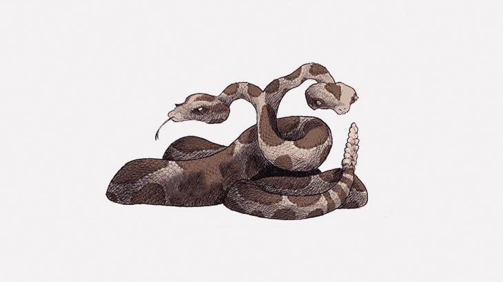 双頭のヘビに同時にネズミの赤ちゃんを食べさせる映像