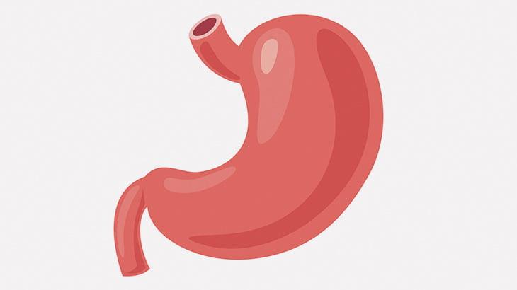 【閲覧注意】摘出した胃袋の中から大量のアレが・・・(動画)