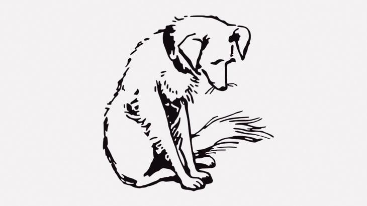 【閲覧注意】犬好きの人は絶対見てはいけない映像が出回ってしまう・・・(動画)
