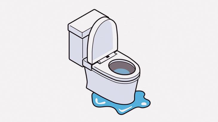 【クソ注意】ウンコが逆流してくるトイレ(動画)