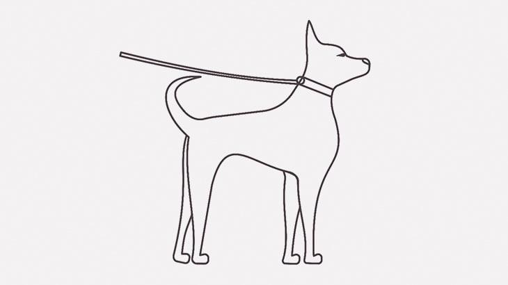 【閲覧注意】犬を棒で叩き殺す父親とアシストする息子(動画)