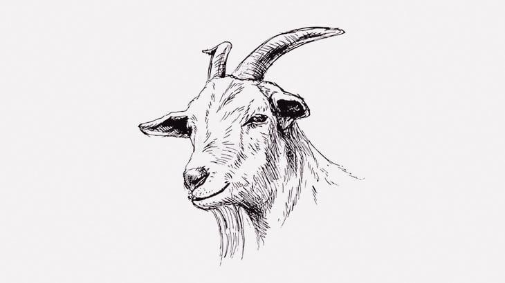 【閲覧注意】なぜか街なかでヤギの首を切って殺す男たち(動画)