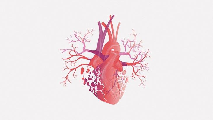 【閲覧注意】路上で心臓がドクンドクン動いてる・・・(動画)