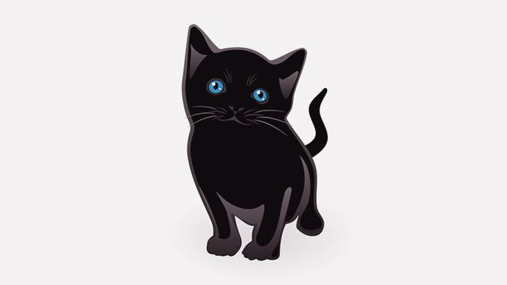 【閲覧注意】子猫の首を締めて殺す男(動画)