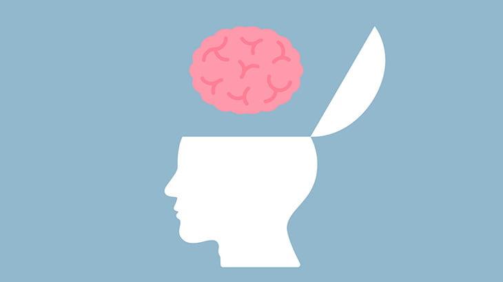 【閲覧注意】頭蓋骨をパカッと開けて脳をごそっと取り出す映像