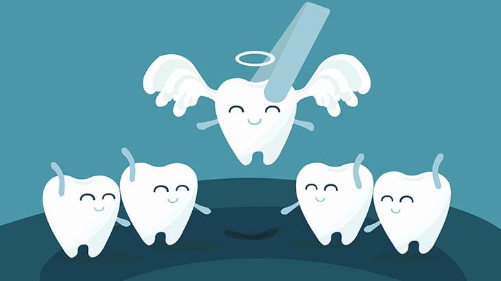 【閲覧注意】歯をペンチで引っこ抜く手術映像