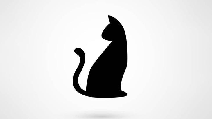 【閲覧注意】中東の男、猫の尻尾を切断してしまう(動画)