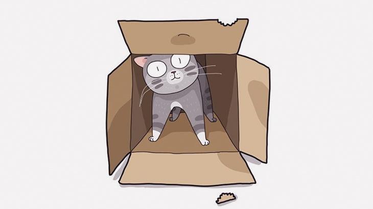 【閲覧注意】子猫、車にゆっくりと轢かれて死亡・・・(動画)