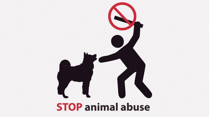 ペットの犬をベランダから宙吊りにして虐待する女(動画)