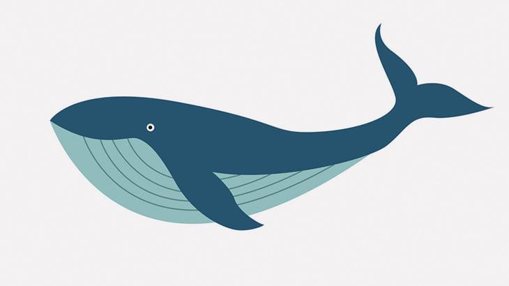 【微閲覧注意】クジラの死体、爆発(動画)