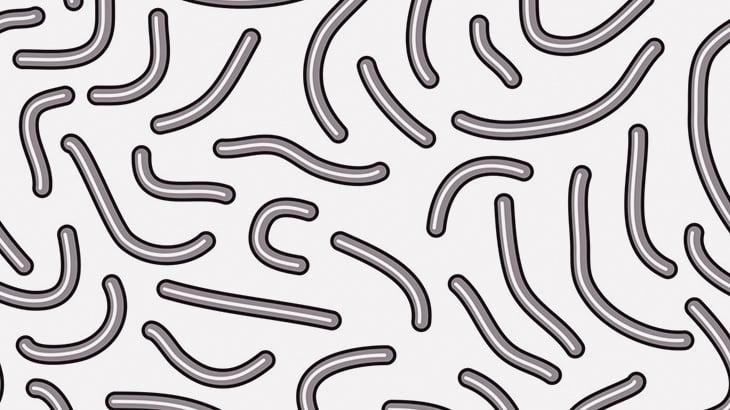 【閲覧注意】人間の腸内から大量の寄生虫を摘出・・・(動画)
