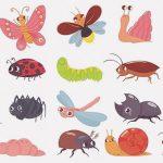 【虫注意】食虫女子「比較的見た目がキモい昆虫を食べるよ!」(動画)
