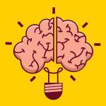 【閲覧注意】医師「死んだ人間の脳を半分に切ってみたよ!」(動画)
