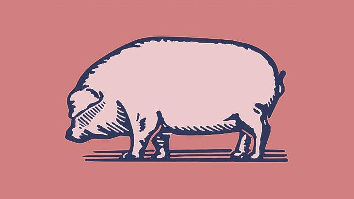 【閲覧注意】豚の足を生きたまま切り落としてしまう男(動画)